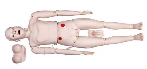 Фантом человека для сестринского дела с измерением артериального давления. DM NS1019
