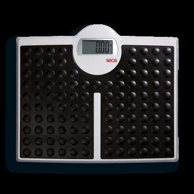 Весы электронные с поверкой Seca 813