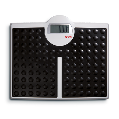 Весы медицинские Seca 813