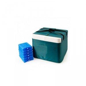 """Термоконтейнер переносной для кратковременного хранения крови, кровезаменителей и биопрепаратов ТМ-""""МОКА"""" в исполнении: ТМ16 (16 литров)"""